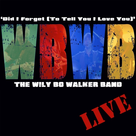 Did I Forget by The WBWB - Artwork © Wily Bo Walker. All Rights Reserved