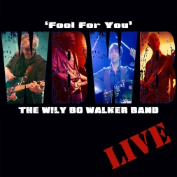 Fool For You by The WBWB - Artwork © Wily Bo Walker. All Rights Reserved